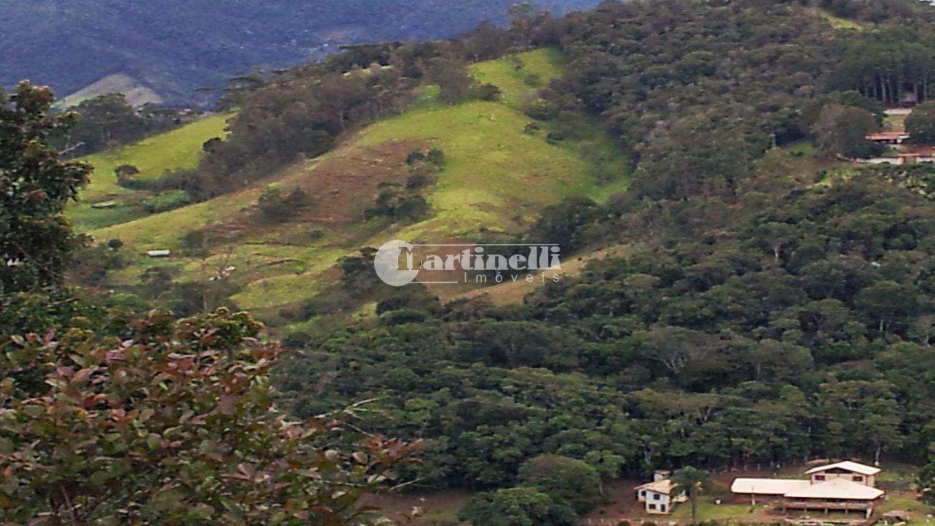 Sítio em Santo Antônio do Pinhal bairro Zona Rural