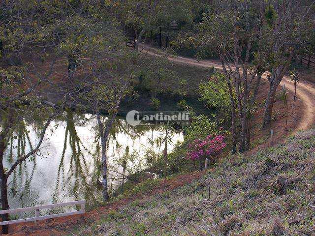 Sítio, Zona Rural, Santo Antônio do Pinhal - R$ 1 mi, Cod: 393