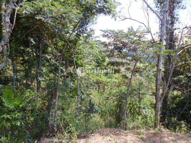 Terreno, Zona Rural, Santo Antônio do Pinhal - R$ 70 mil, Cod: 325