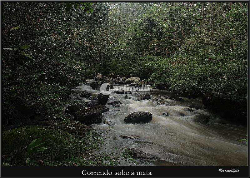 Terreno de Condomínio, Rural, Santo Antônio do Pinhal - R$ 155 mil, Cod: 600