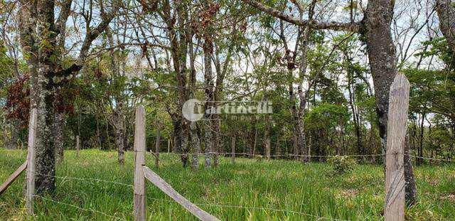 Terreno, Santa Cruz, Santo Antônio do Pinhal - R$ 180 mil, Cod: 616