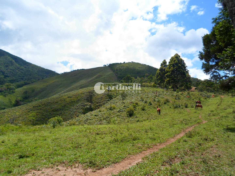 Área, Rural, Santo Antônio do Pinhal - R$ 2 mi, Cod: 617