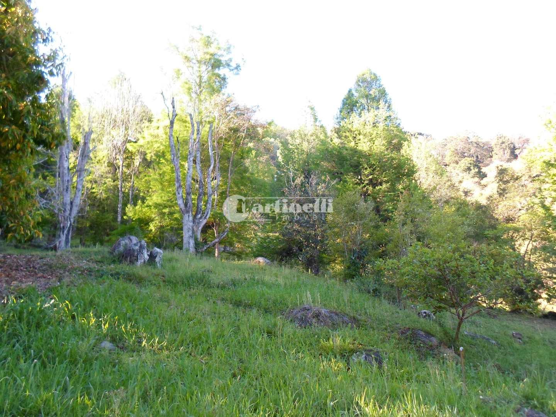 Área, indeterminado, Campos do Jordão - R$ 700 mil, Cod: 620