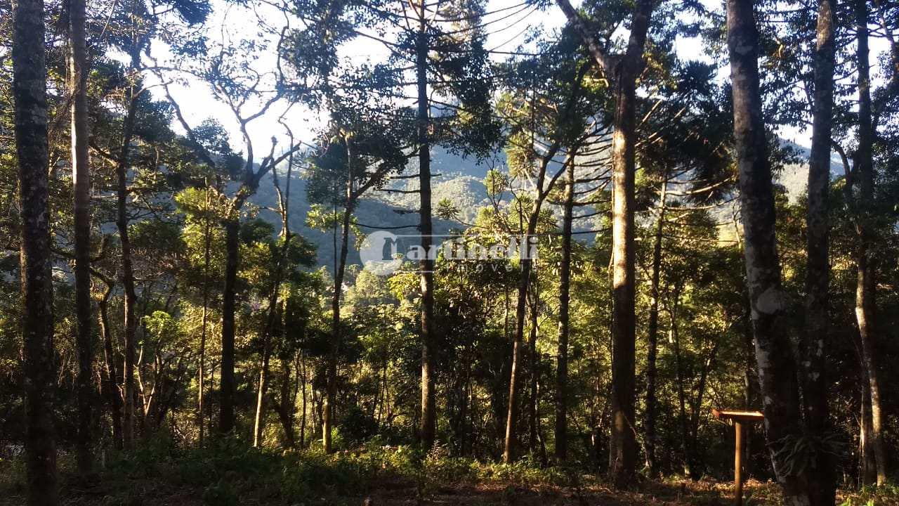Casa de Condomínio com 6 dorms, urbano, Santo Antônio do Pinhal - R$ 1.59 mi, Cod: 624