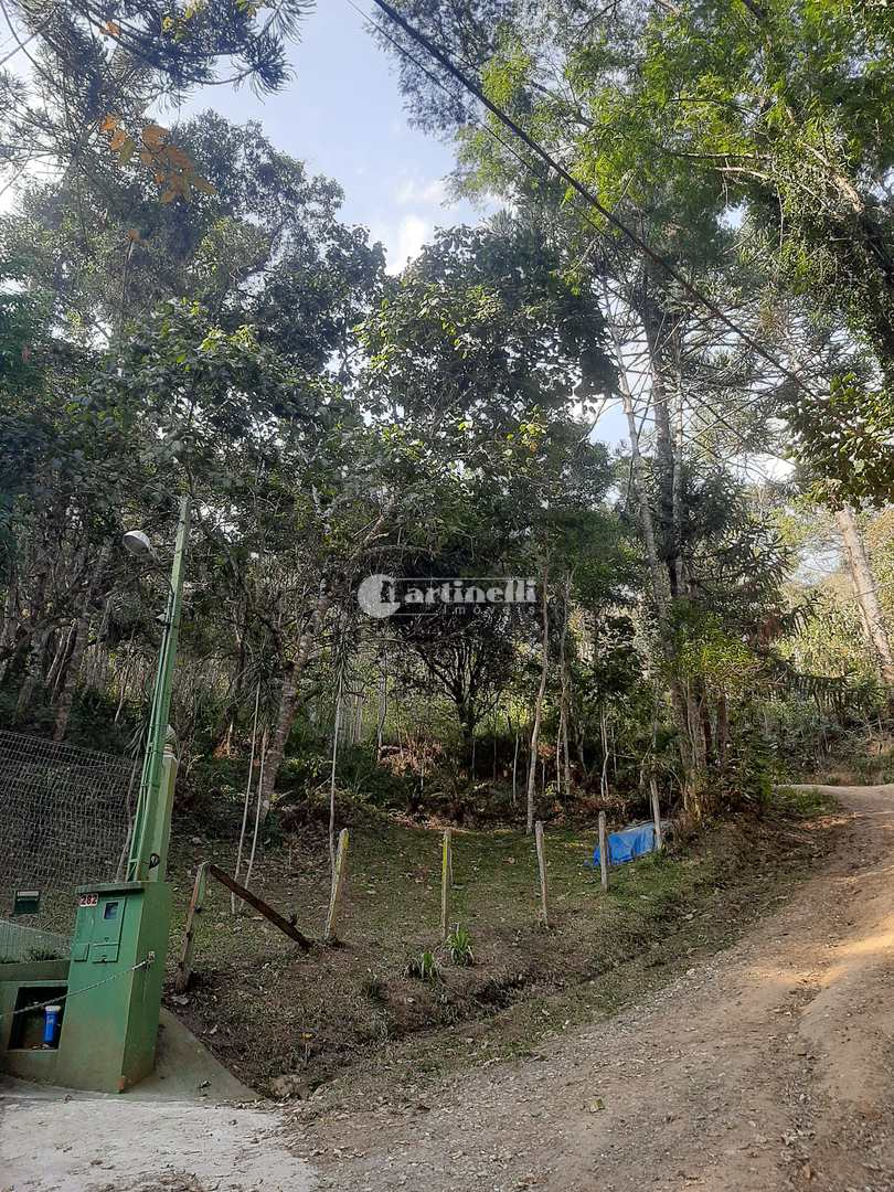 Terreno, Centro, Santo Antônio do Pinhal - R$ 350 mil, Cod: 649
