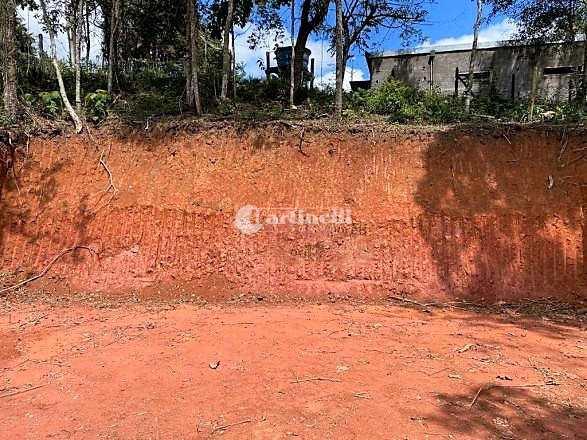 Terreno, Pinhalzinho, Santo Antônio do Pinhal - R$ 150 mil, Cod: 671