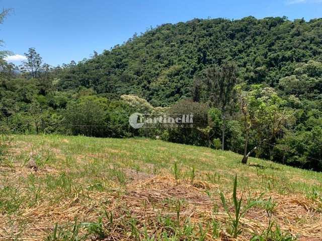 Terreno de Condomínio, Rio Preto, Santo Antônio do Pinhal - R$ 350 mil, Cod: 673