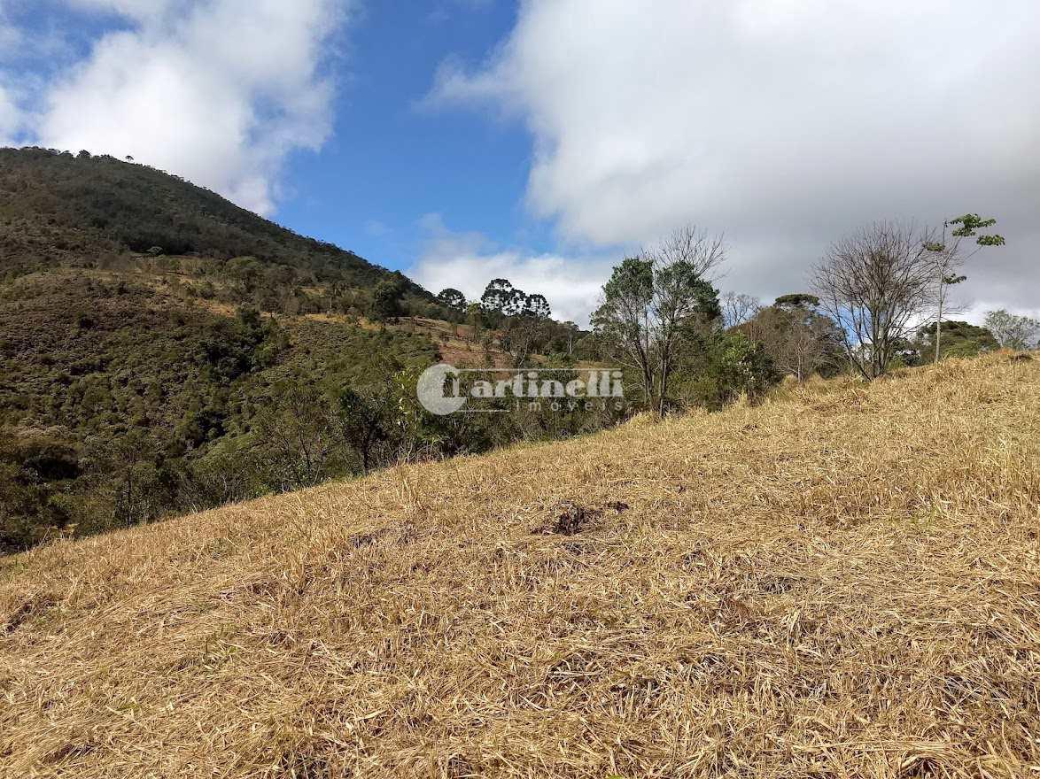 Terreno, 6 km, Santo Antônio do Pinhal - R$ 700 mil, Cod: 702