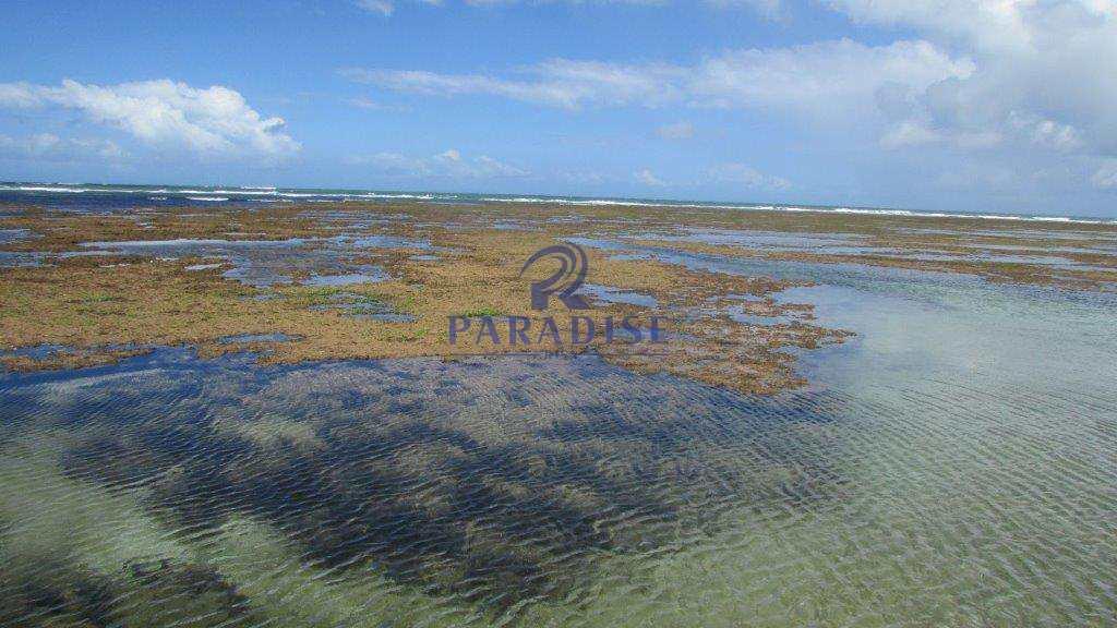9i-Praia-Itacimirim-Litoral-Norte-Praia-Espera
