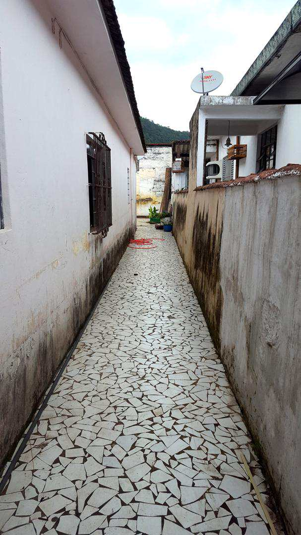 I - quintal (5)