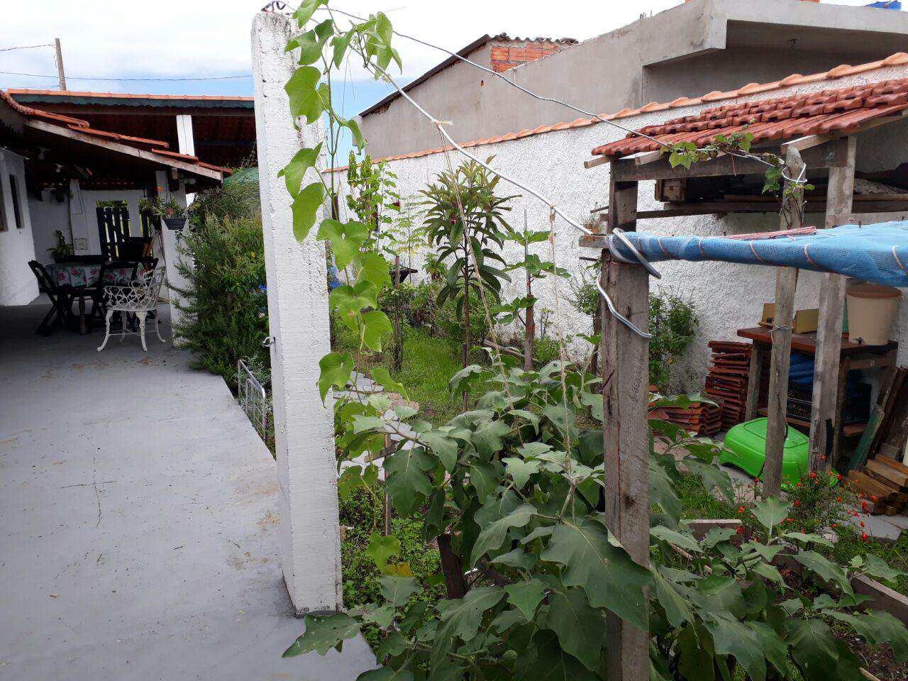 I. Área externa (1)