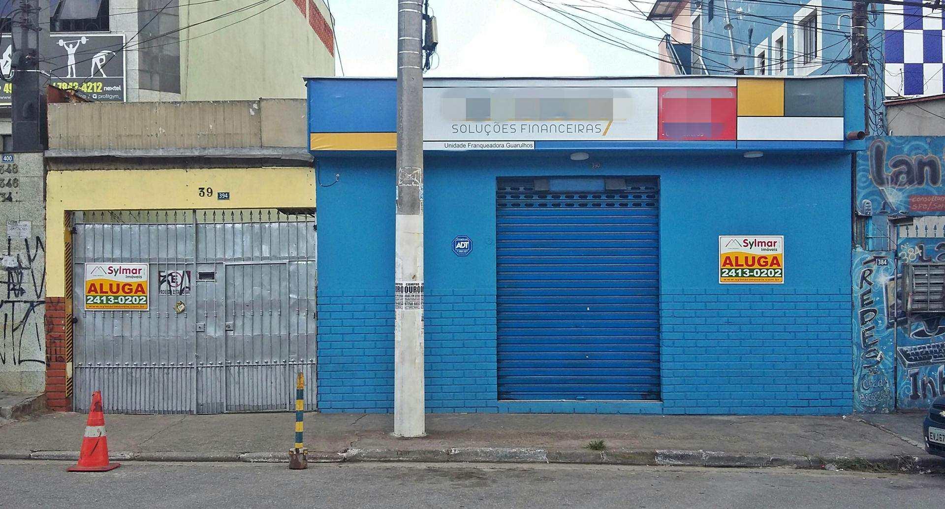 Walter Ribeiro 390 (1)