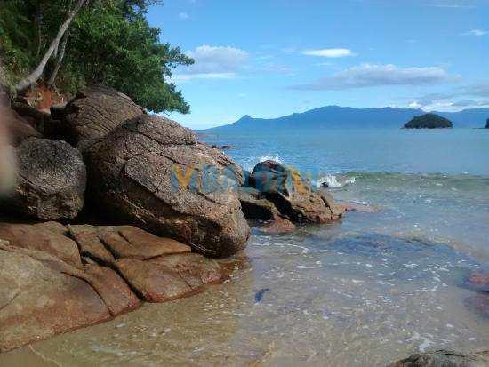 Praia-Cocanha