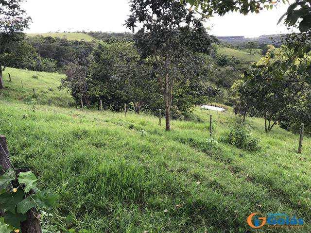 Chácara com 3 dorms, Zona Rural, Vianópolis - R$ 400 mil, Cod: 8947