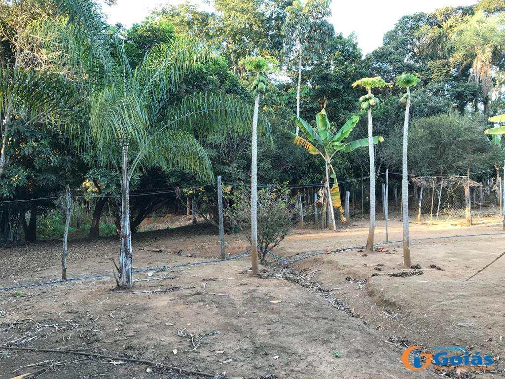 Chácara com 3 dorms, Zona Rural, Vianópolis - R$ 400 mil, Cod: 8987