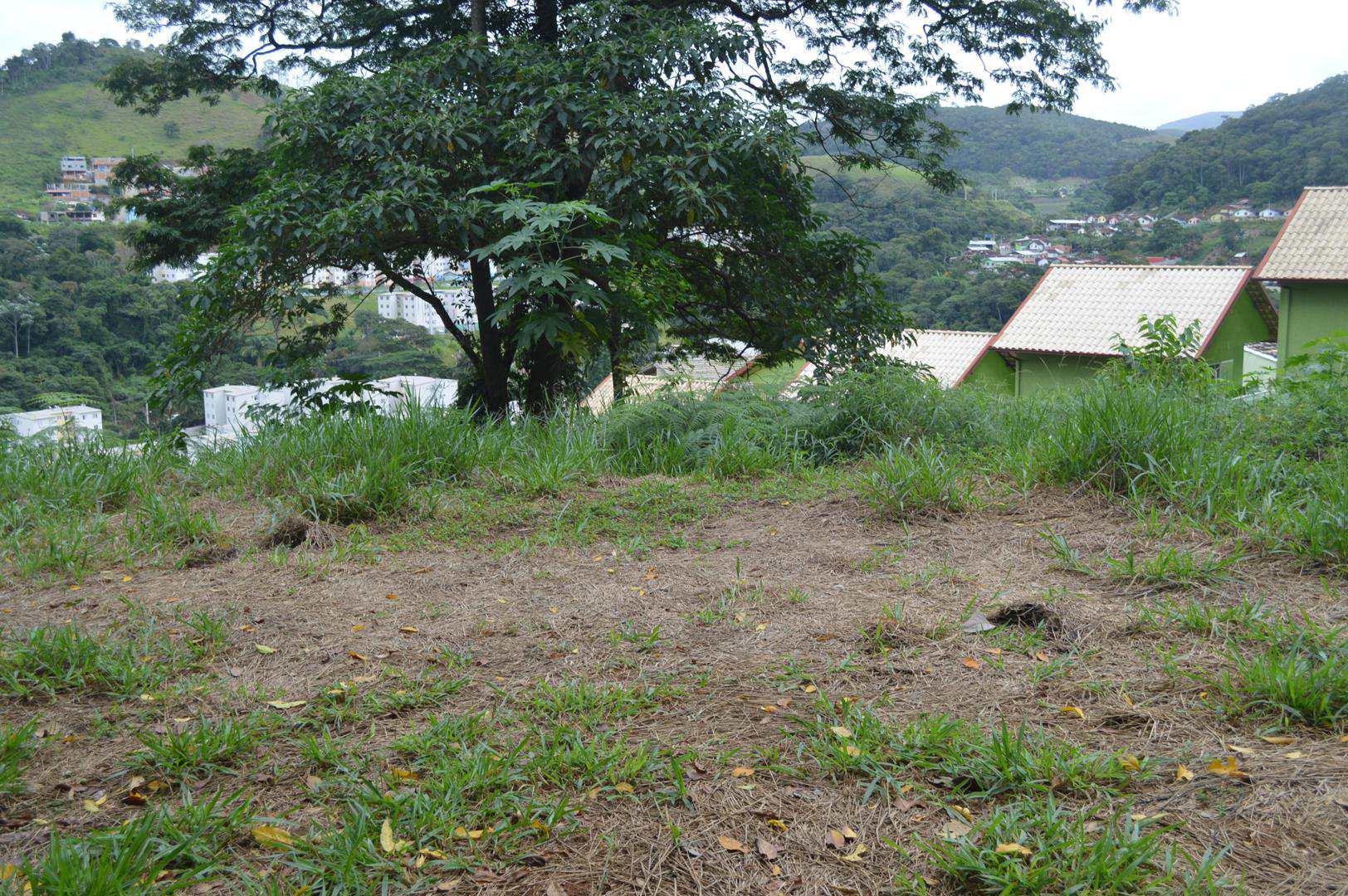 lagoa seca- 100 (1)