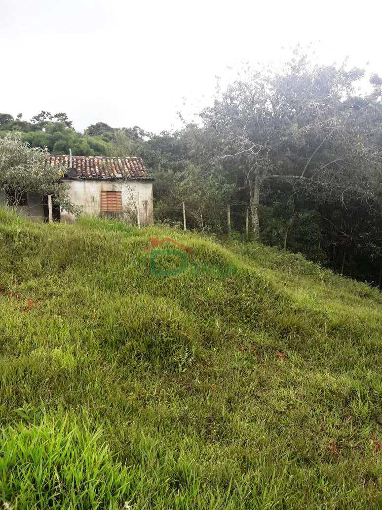 Sítio com 4 dorms, Centro, Coronel Xavier Chaves - R$ 400 mil, Cod: 248