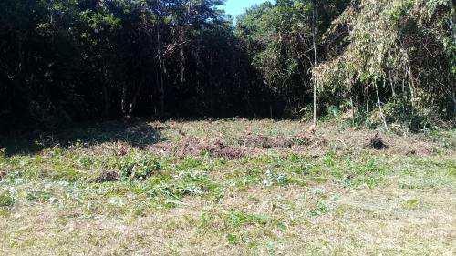 Terreno barato em excelente localidade, aceita parcelamento