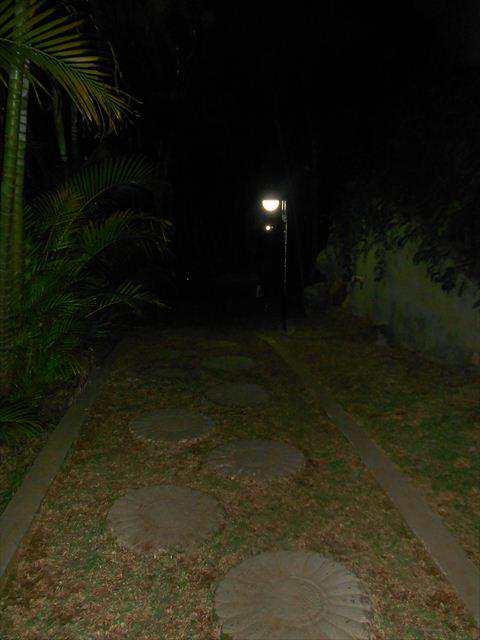 290300-11_2012_GUARUJA_ANTONIA_LUCAS_E_MARCIA_0071.jpg