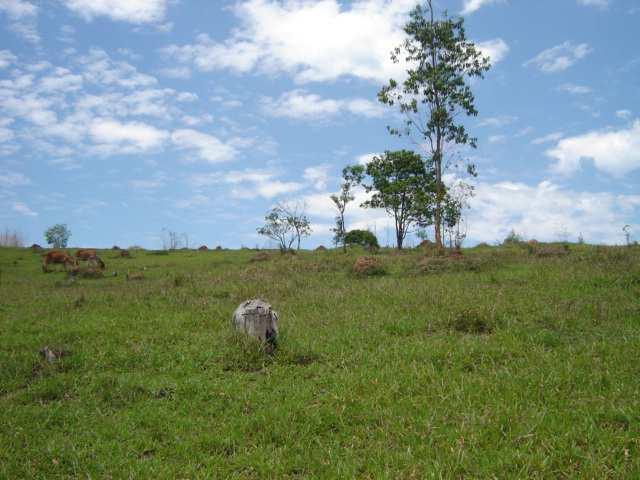 Terreno próximo à Dutra , Jardim Dulce, Guararema