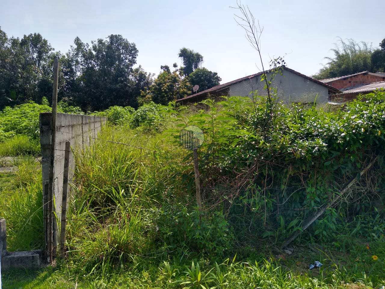 Terreno, Barranco Alto, Caraguatatuba - R$ 150 mil, Cod: 434