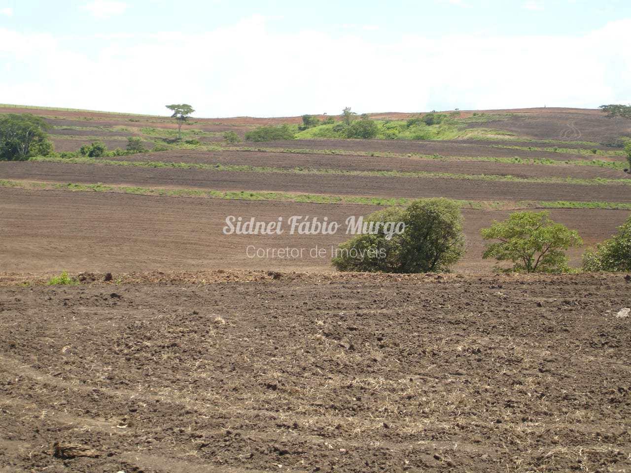 Fazenda, Área Rural, Guaimbê - R$ 5.6 mi, Cod: 154