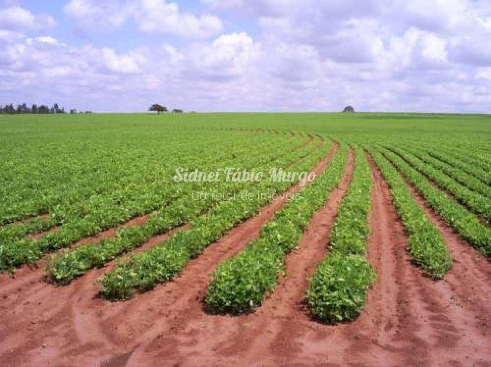 Fazenda, ÁREA RURAL, Getulina - R$ 7 mi, Cod: 198