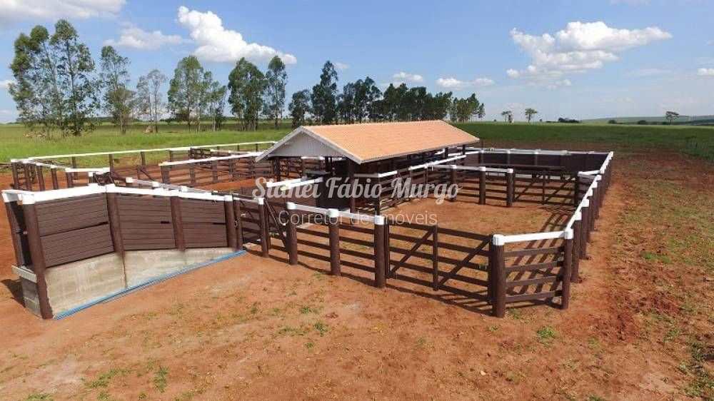 Sítio, Área Rural, Rinópolis - R$ 1.2 mi, Cod: 206