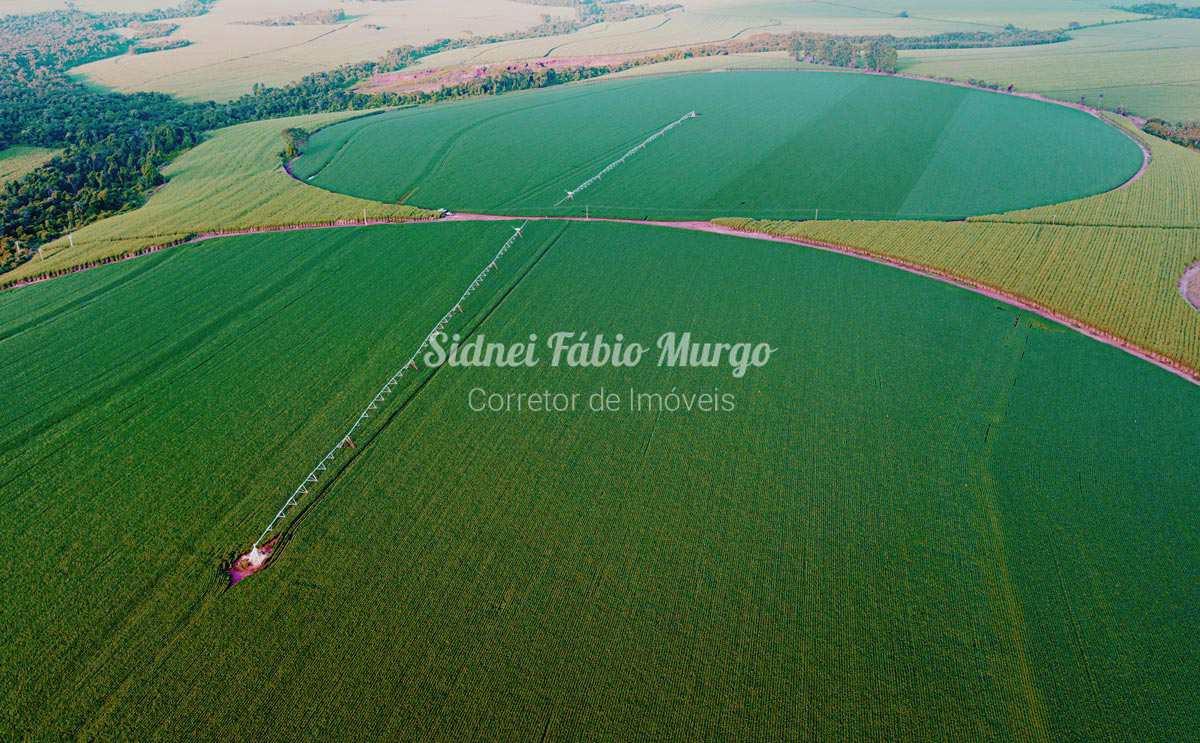 Fazenda com 3 dorms, Área Rural, Luiziânia - R$ 52 mi, Cod: 218