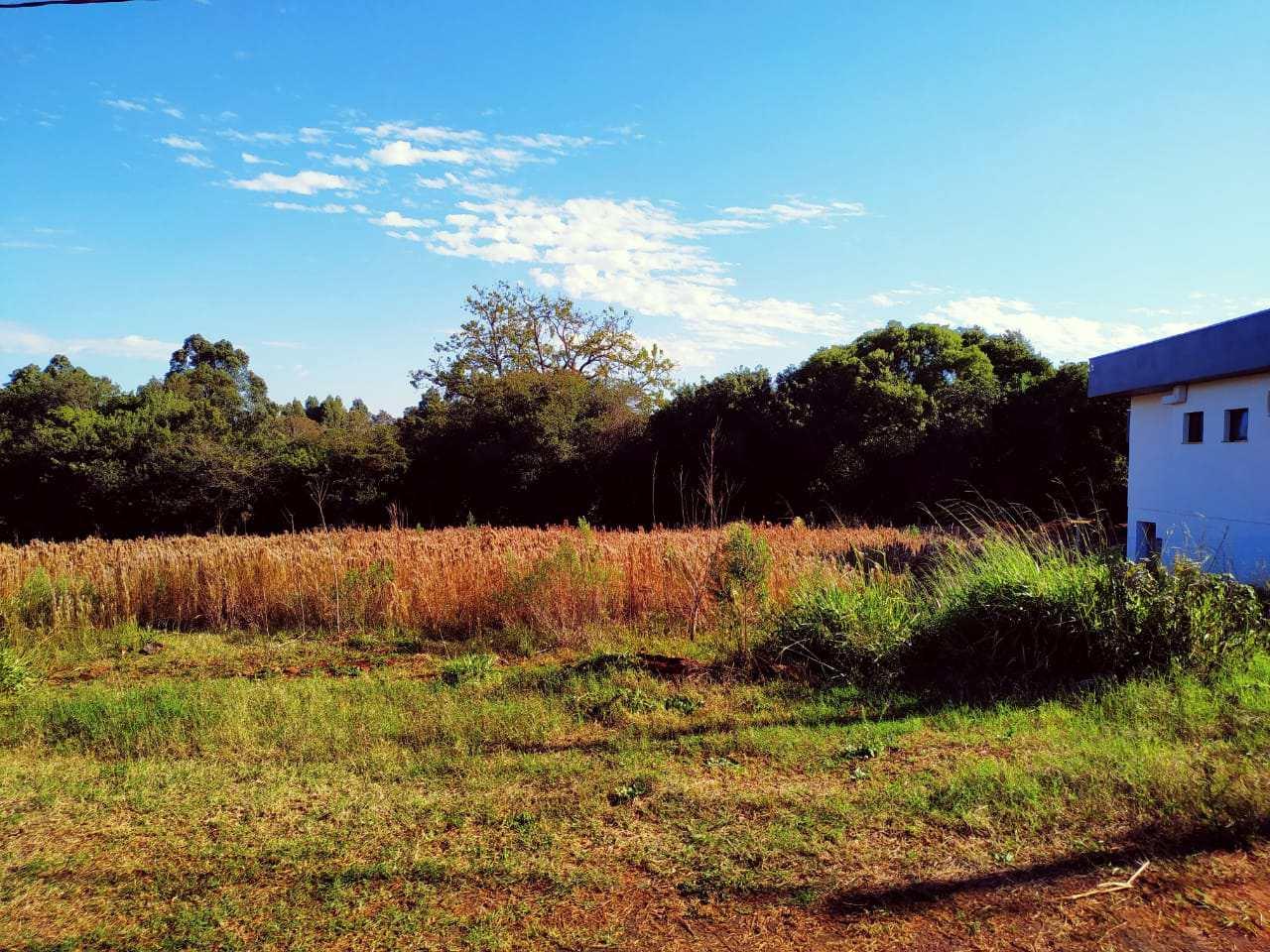 Terreno, Bairro Medianeira, Três de Maio - R$ 90 mil, Cod: 81