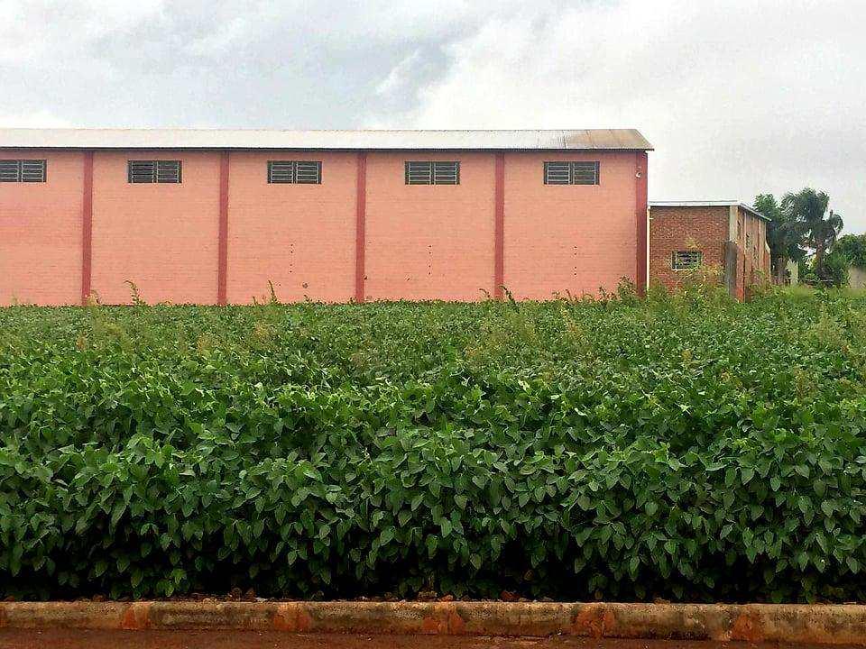 Terreno, Bairro Planalto, Três de Maio - R$ 110 mil, Cod: 132