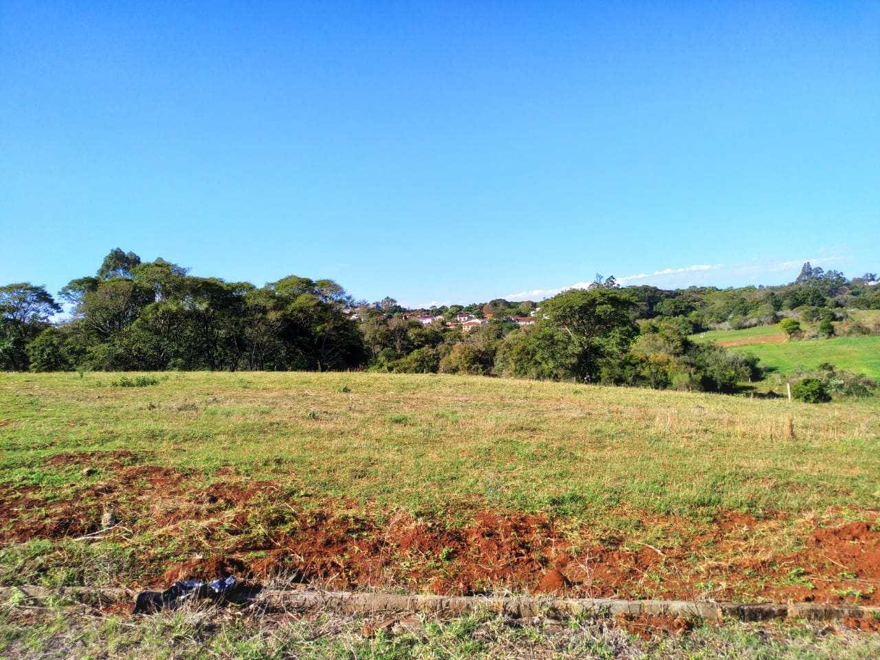 Terreno, Bairro Medianeira, Três de Maio - R$ 130 mil, Cod: 260