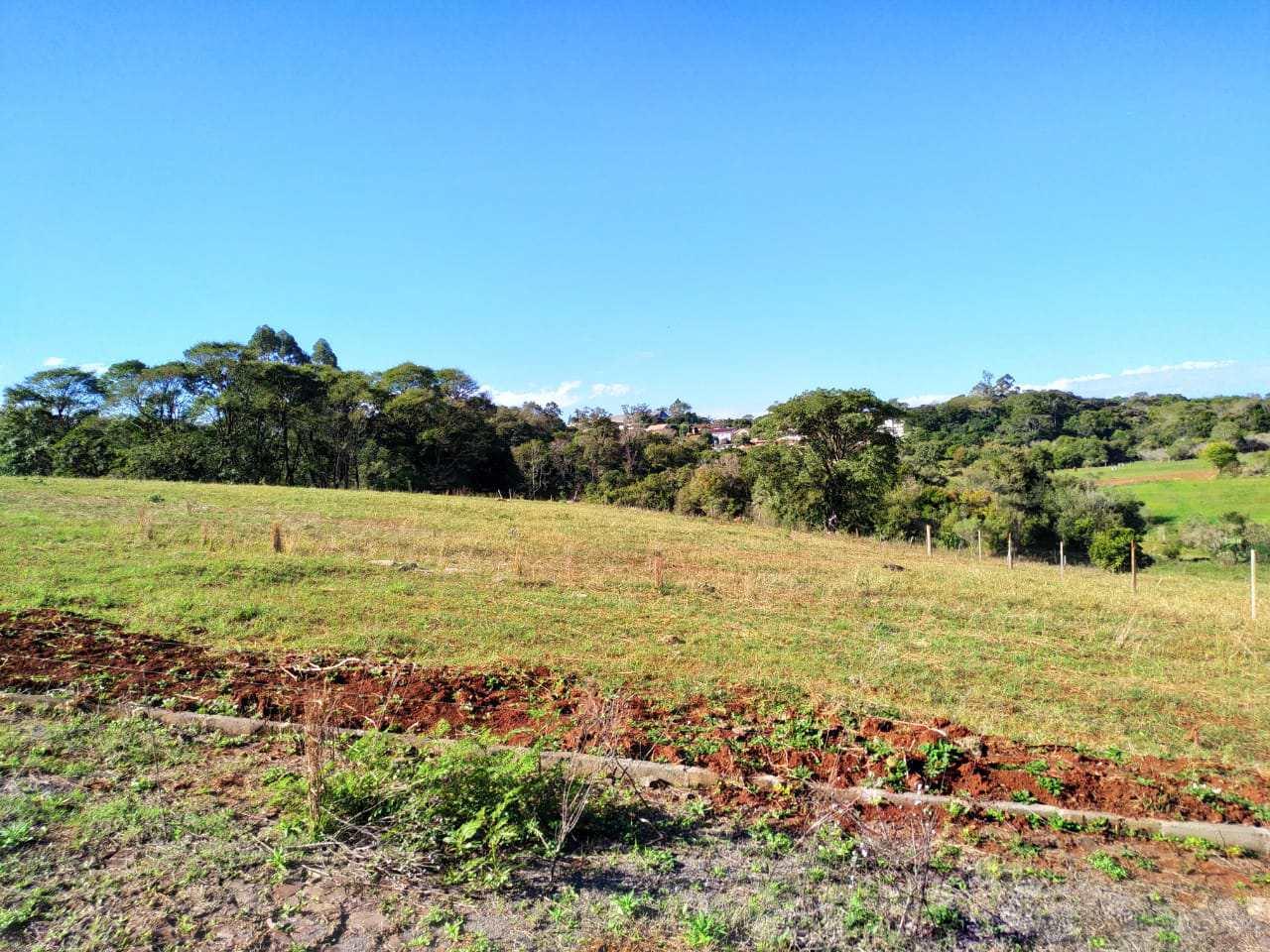 Terreno, Bairro Medianeira, Três de Maio - R$ 130 mil, Cod: 261