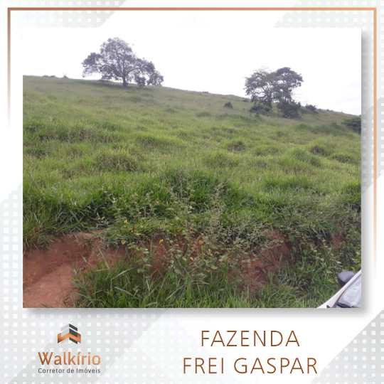 Fazenda, Frei Gaspar, Frei Gaspar - R$ 9.12 mi, Cod: 355