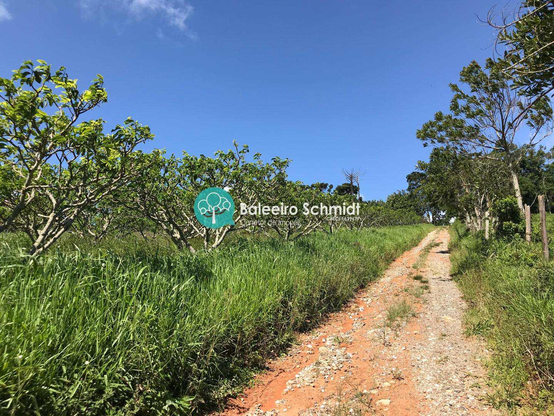 Chacara Rural em Santo Antonio do Pinhal