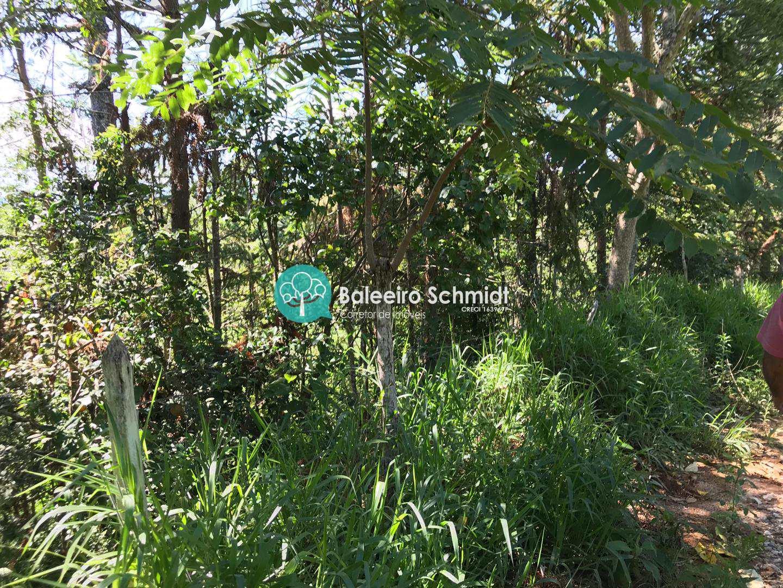 Sítio, Aproxi 10 km do centro, Santo Antônio do Pinhal - R$ 300 mil, Cod: 291