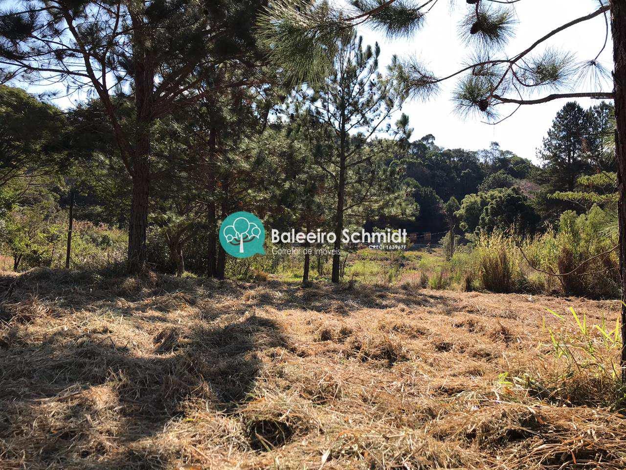 Terreno  Condomínio  Santo Antônio do Pinhal Plano