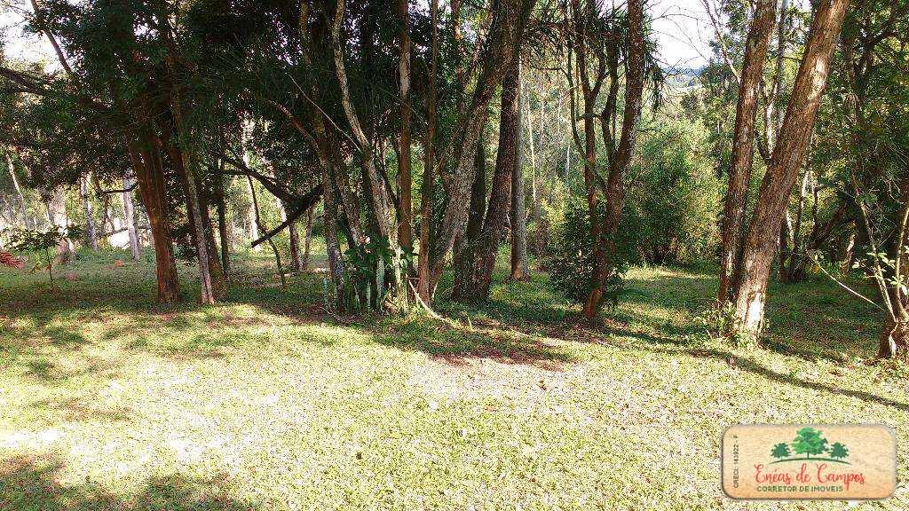 Chácara com 4 dorms, Feital, Ibiúna - R$ 420 mil, Cod: 56009935