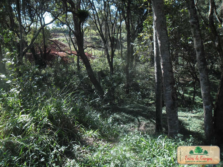 Terreno, Campo Verde, Ibiúna - R$ 80 mil, Cod: 60391913