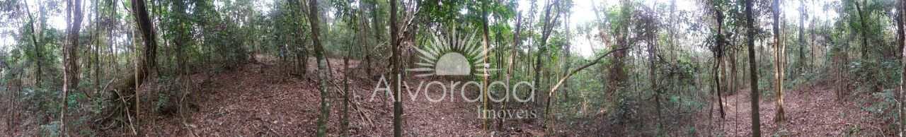 Sítio, Bairro dos Silvas, Morungaba - R$ 220 mil, Cod: ST002