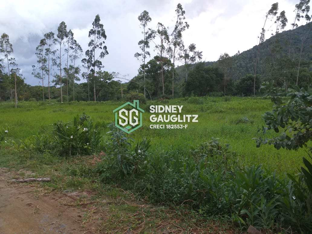 Fazenda, 150 Alq. Itapitangui, Cananéia - R$ 3 mi, Cod: 12