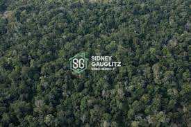 Area para compensação ambiental, Cananéia - R$ 300 mil, Cod: 32