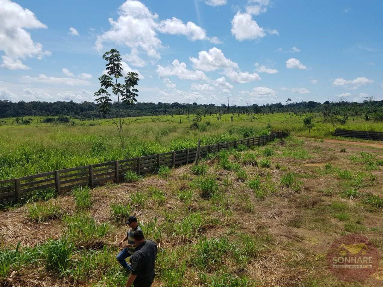 Fazenda, rural, Colniza - R$ 60 mi, Cod: 143