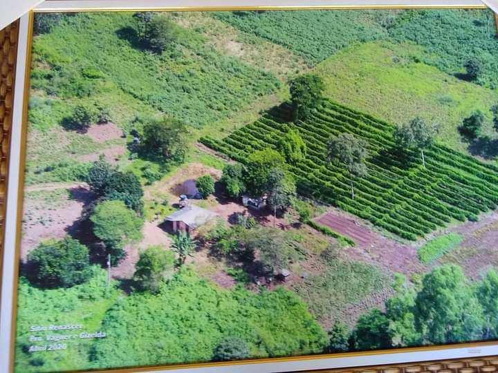 Chácara com 1 dorm, rural, Jaciara - R$ 3 mi, Cod: 409