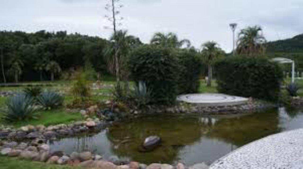 Terreno, Jurerê Internacional, Florianópolis - R$ 1.1 mi, Cod: 33439717