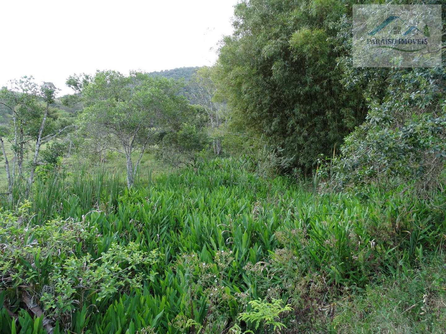 Sítio a Venda em Paraisópolis – Sul de Minas