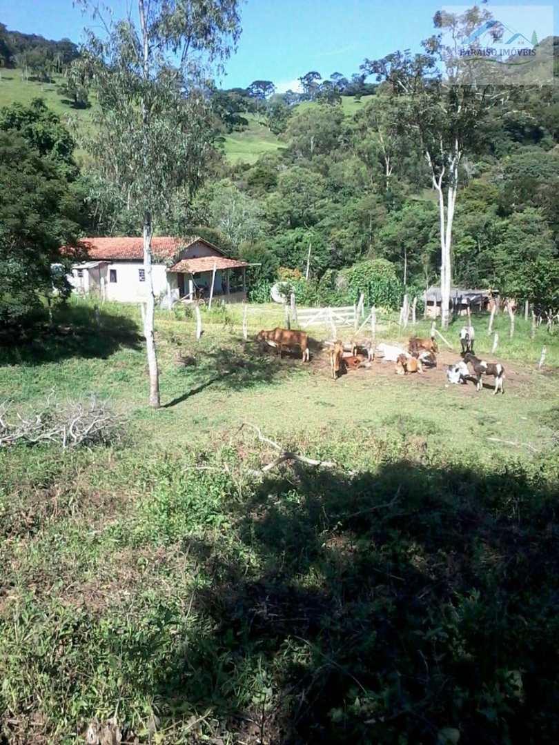 Chácara à venda em Brasópolis | Sul de Minas Gerais