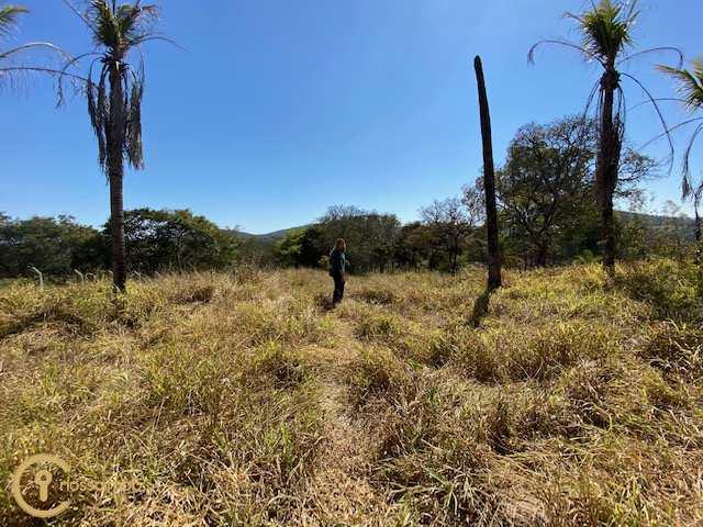 Fazenda com 8 dorms, vista alegre, Esmeraldas - R$ 1.3 mi, Cod: 41